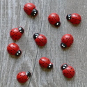 Pack of 10 wooden Ladybird decoration Embellishments, card toppers, as shown