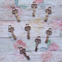 Pack of 8 silver coloured Metal Key embellishment, shapes
