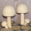 2 Natural Pine Toadstool / mushroom decoration, as shown
