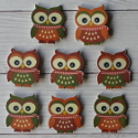 Pack of 8 wooden owl, orange green, brown